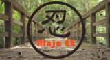 Ninja EX ver.1 〜忍者あらわるの巻〜